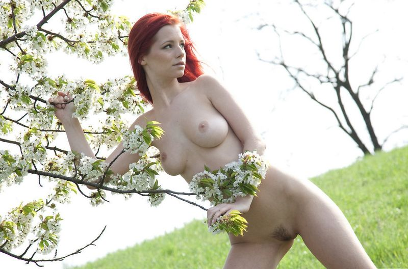green field red head (4)