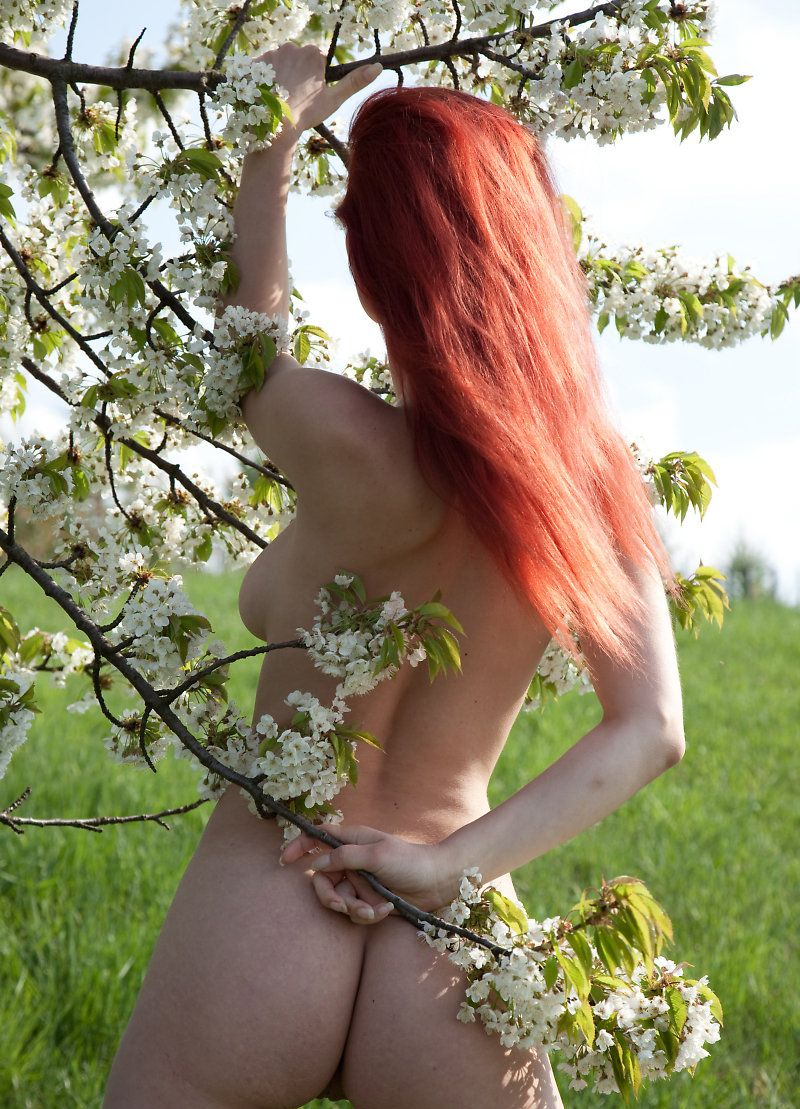 green field red head (6)