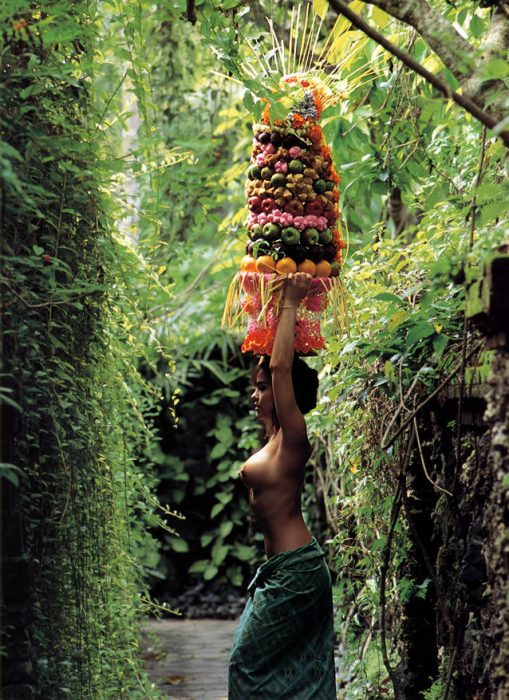 Moving The Fruit 509x700 Moving The Fruit