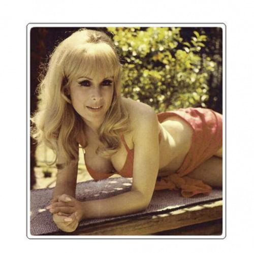 1170288528 f 500x498 Barbara Eden ... I Dream of Jeannie