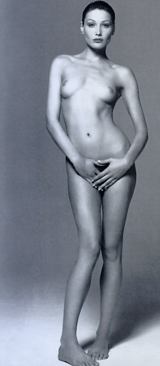 Nude pictures of carla bruni let hackers access diplomatic pcs